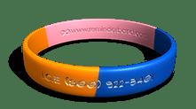 I.C.E. Wristband