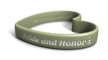 Pride and Honor Wristband