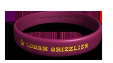 Mascot School Wristband