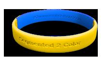 Segmented 2 Color